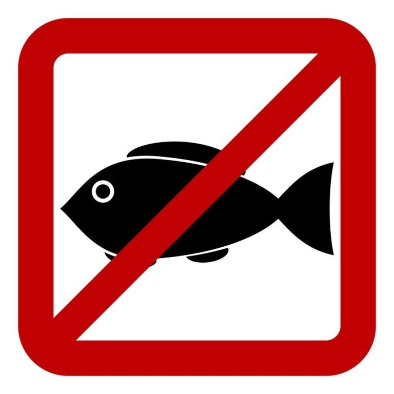 день действий против рыбной ловли в россии